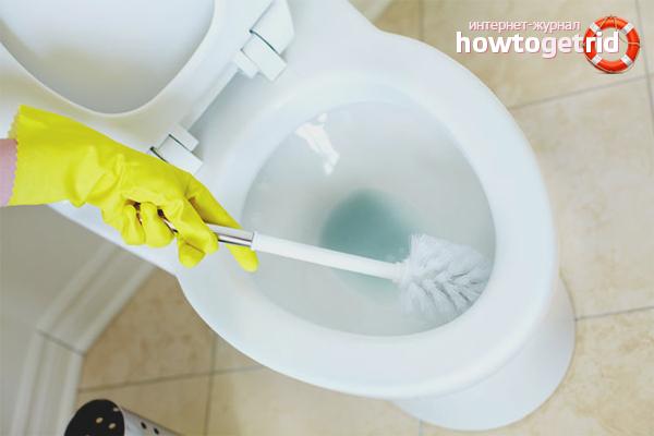 Wie man den Geruch in der Toilette loswird