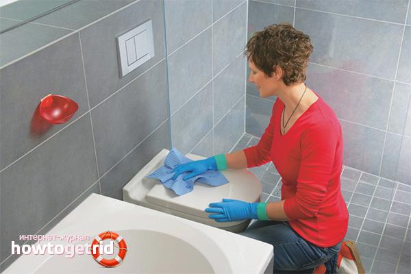 Beseitigen Sie den Geruch in der Toilette