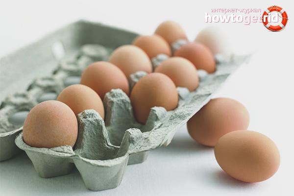 Auswahl und Lagerung der Eier