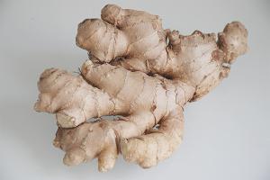 Com fer créixer el gingebre