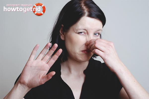 Wie man den Geruch von Feuchtigkeit in einer Wohnung loswird