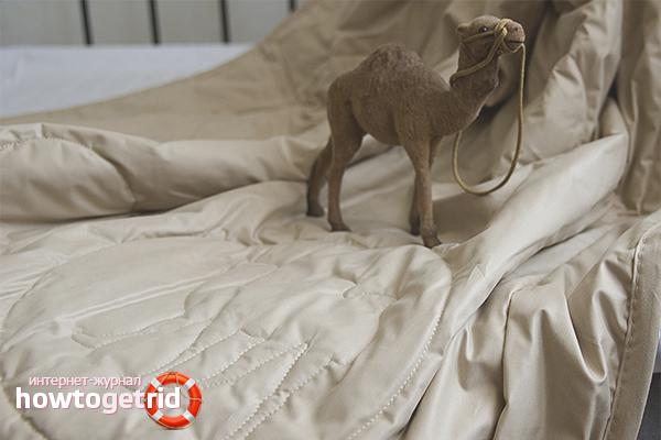 Hur man torkar en kamelfilt