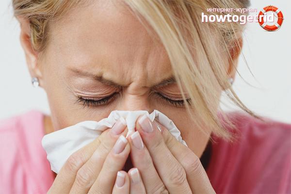 Wie man eine Erkältung in 1 Tag loswird