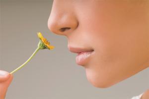 Как бързо да върнете миризмата и вкуса със студ