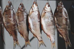 Kā nožūt zivis