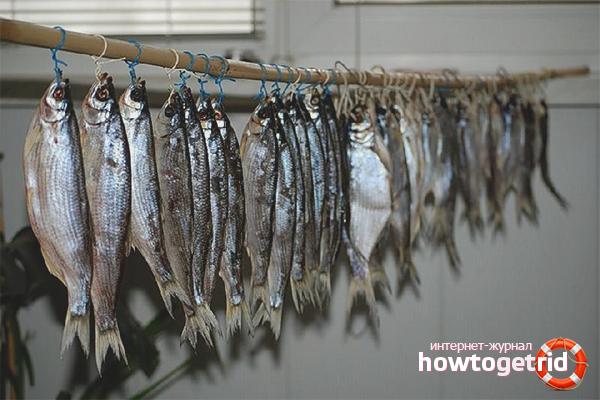 Wie man Fisch trocknet
