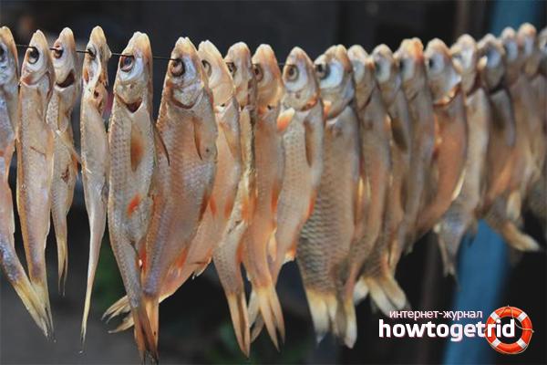 Сушене на риба