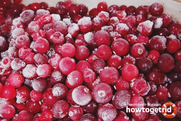 Djupfryst lingonberry