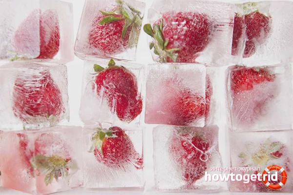 Congelar les maduixes en les briquetes de gel
