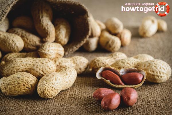 Cara menanam kacang tanah di kebun