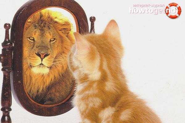 איך גבר להגביר את ההערכה העצמית