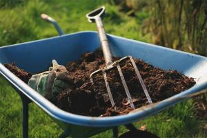 Hur man använder kungödsel som gödningsmedel