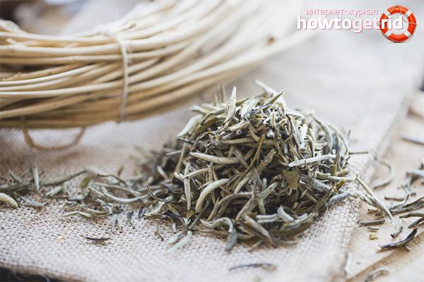 Els avantatges del te blanc