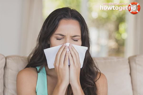 אלרגיה לאבק ביתי