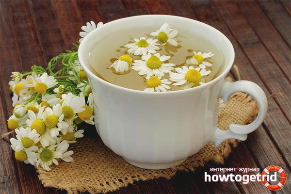 Els avantatges i els perjudicis del te de camamilla