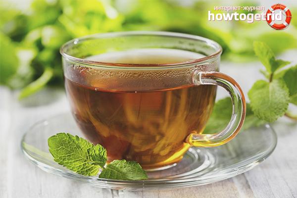 Les méfaits du thé à la mélisse pour le corps