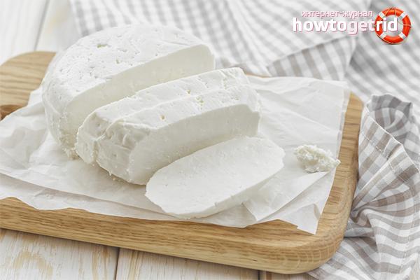 Wie man Adyghe-Käse macht