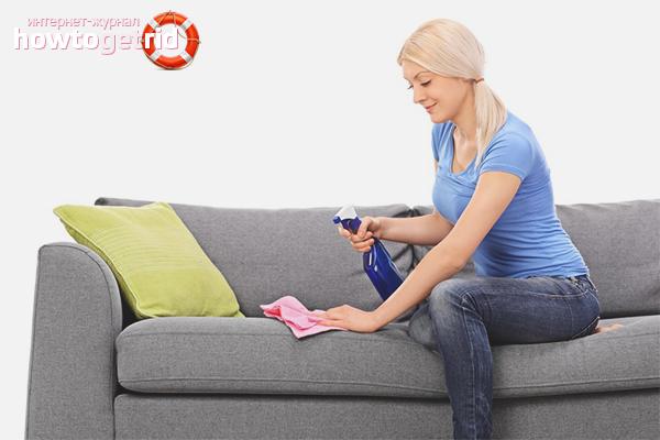 Cara mengeluarkan darah dari sofa