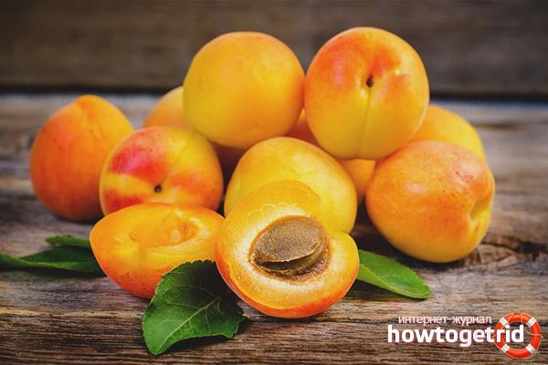 Aprikosen während der Schwangerschaft