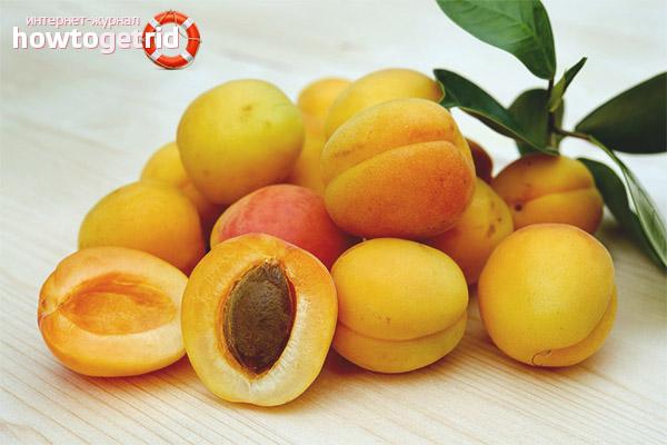 Aprikosenkontraindikationen für schwangere Frauen
