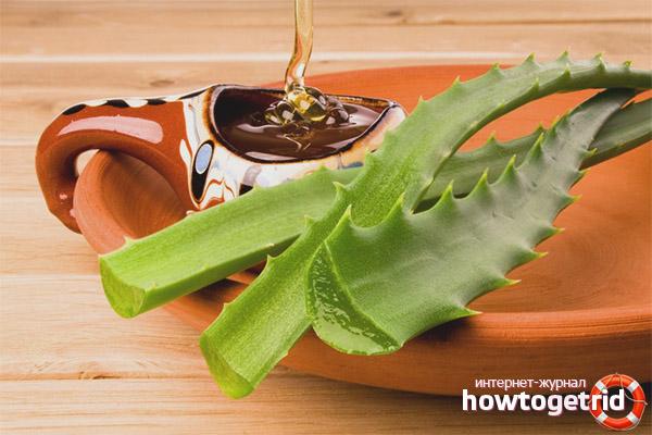 Aloes z miodem na kaszel