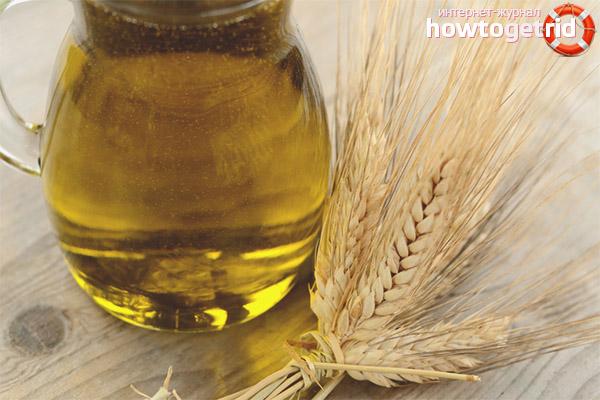 Indicações e contra-indicações para o óleo de gérmen de trigo