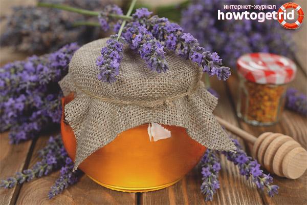 Propietats útils i contraindicacions de la mel d'espígol