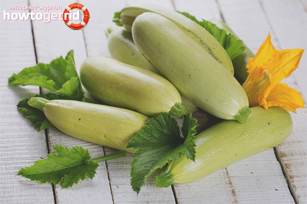 Bahaya dari zucchini semasa kehamilan