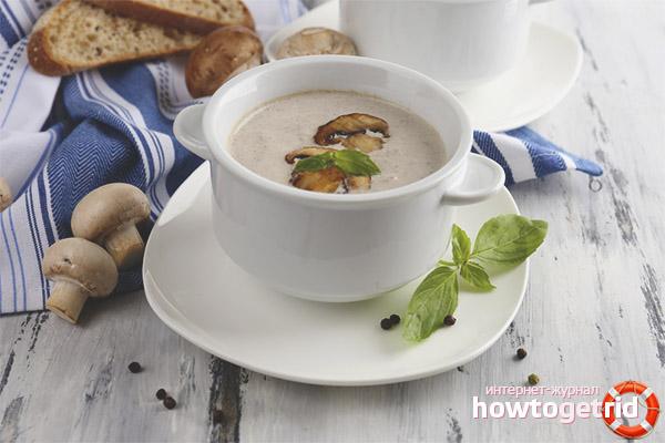Гљива супа током дојења
