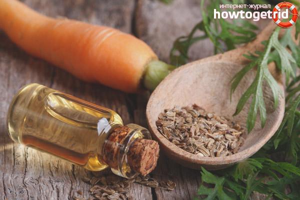 Óleo essencial de semente de cenoura