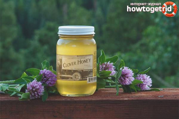 Ako si vybrať ďatelinový med
