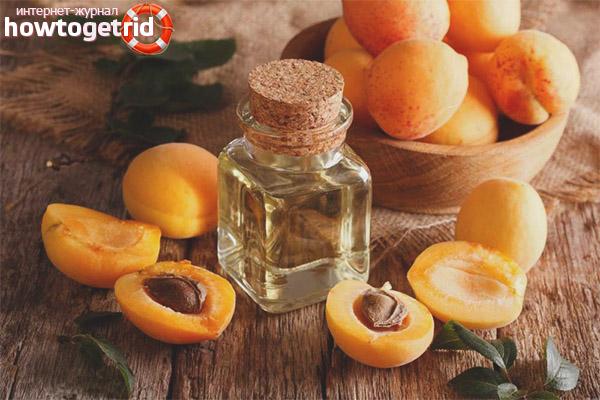 Volksrezepte mit Aprikosenöl
