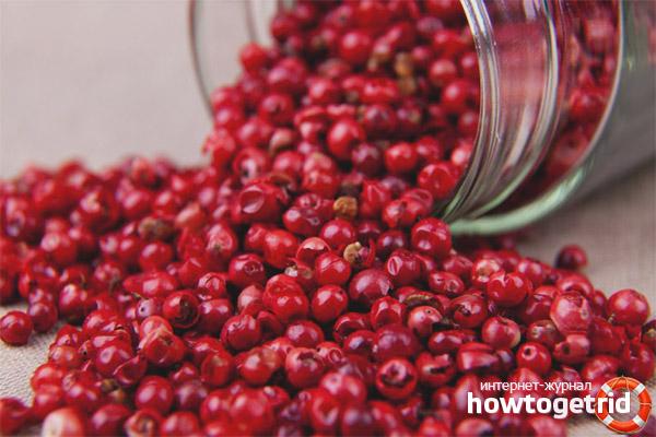 Propietats útils i aplicació de pebre rosa