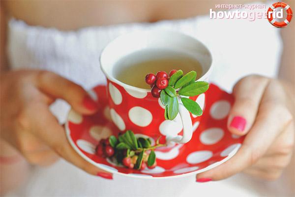 Propietats i contraindicacions útils del te de lingonberry