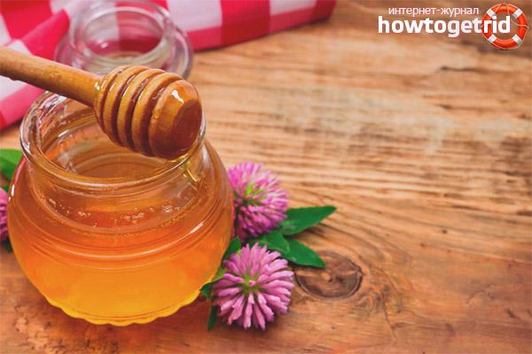 Užitočné vlastnosti a kontraindikácie pre ďatelinový med