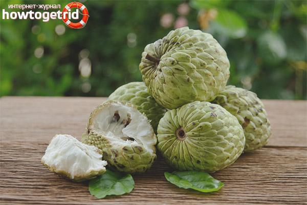 Propietats i contraindicacions útils de la poma crema
