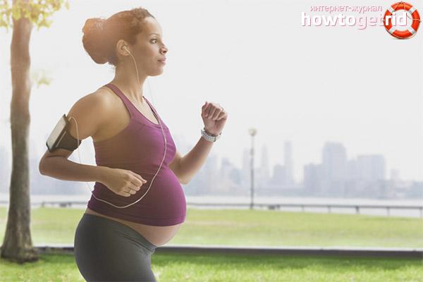 Normes de funcionament de la maternitat
