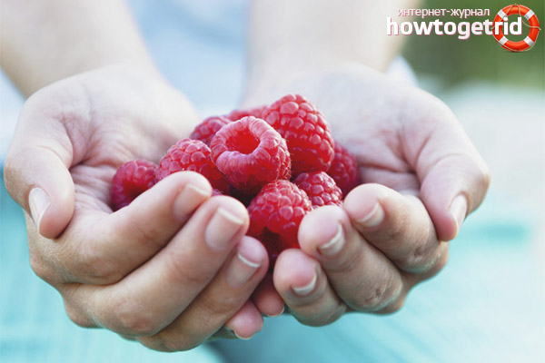 Противопоказания малини по време на бременност