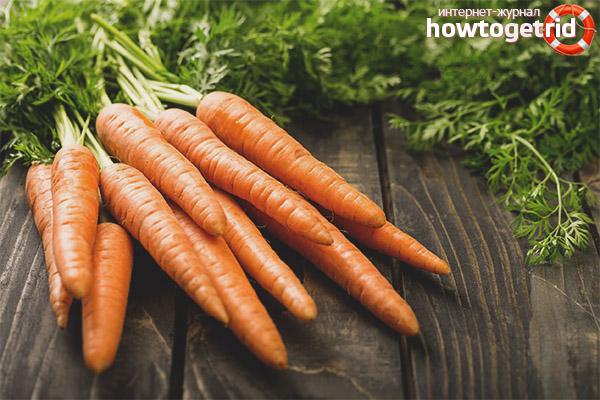 Cenouras para diabetes