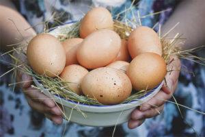 Les dones embarassades poden menjar ous