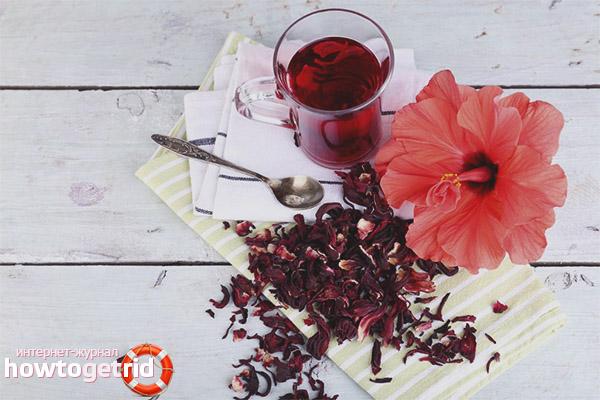 Kan gravida kvinnor dricka hibiskust