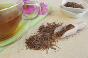 คุณสมบัติที่มีประโยชน์และข้อห้ามของชา Lapacho