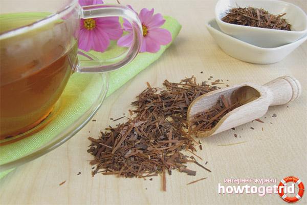 Propietats i contraindicacions útils del te lapacho