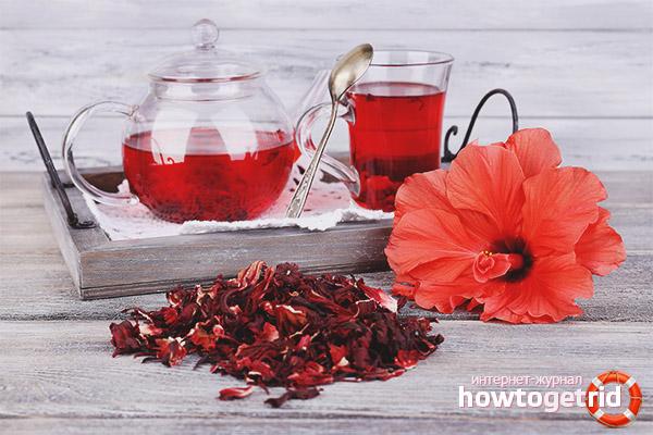 Regler för val och bryggning av hibiskus