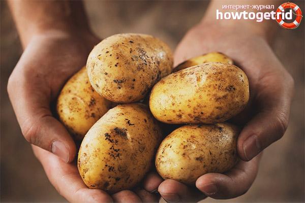 Wie man Kartoffeln mit Diabetes kocht