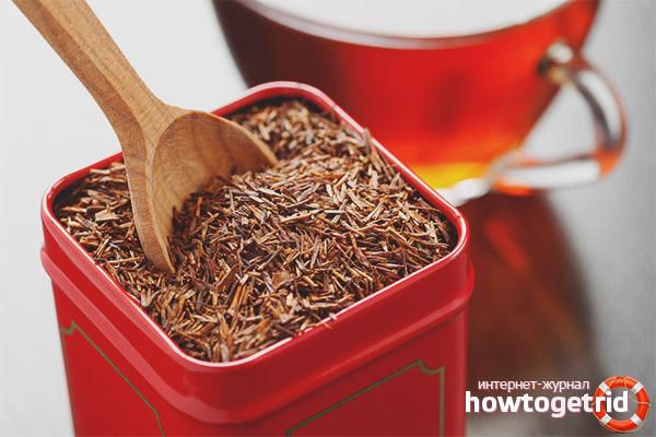 Gegenanzeigen und schädliche Wirkungen von Rooibos-Tee