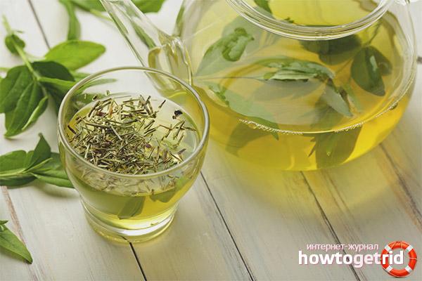 Varför grönt te är bra för kvinnor och män
