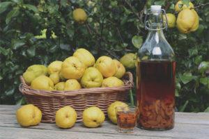 Com fer vi de codonyat