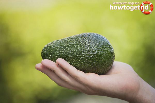 Worauf Sie bei der Auswahl einer Avocado achten sollten