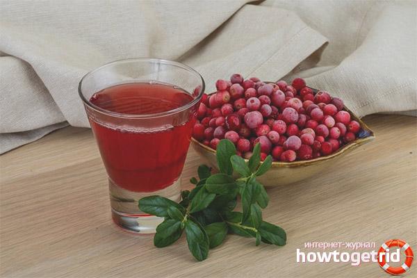 Cum se aplică tinctura pe lingonberry